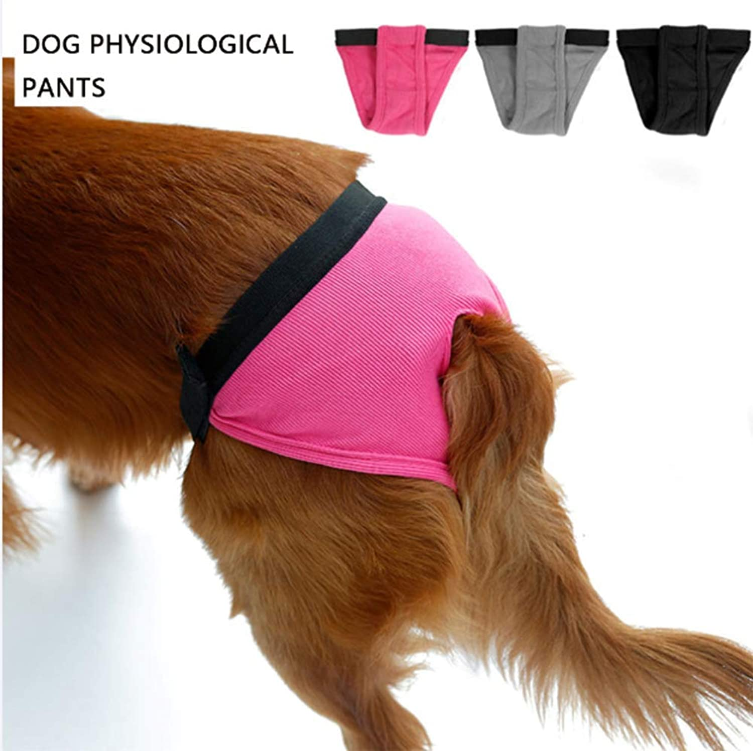 Reusable Diaper Pants Dog Girl with Belly Bag, Suitable for Dogs, S
