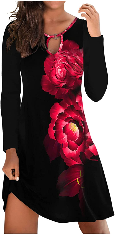 ManxiVoo Women's Casual Plain Simple Long Sleeve T-Shirt Loose Dress Printed Short Mini Dress for Spring Autumn
