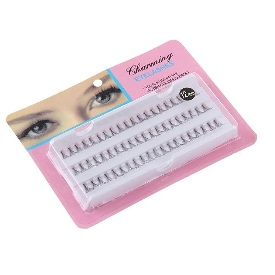 アプト賄賂熱狂的なFeteso 1ボックス つけまつげ 上まつげ Eyelashes アイラッシュ ビューティー まつげエクステ レディース 化粧ツール アイメイクアップ 人気 ナチュラル 飾り 柔らかい 装着簡単 綺麗 極薄/濃密