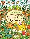 Mein Stickerbuch: Wie wachsen Obst und Gemüse