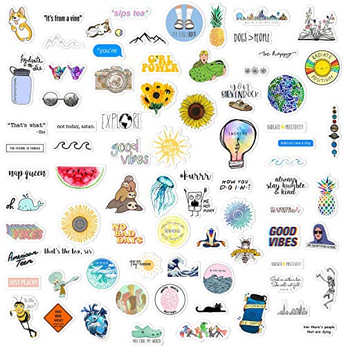 Hizoop 110 Pcs Cute Sticker Pack,Graffiti Sticker Decals Vinyls for Laptop,Cars,Motorcycle,Bicycle,Skateboard Luggage,Bumper Stickers Decals Waterproof Trendy Stickers For Teens