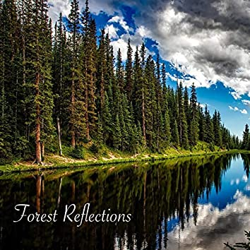 Forest Reflections (feat. Greg Strohman)