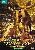 小さな世界はワンダーランド TVオリジナル完全版(2枚組) [DVD] image