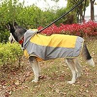 犬用レインコート 犬服 小型犬レインポンチョ ペット レインコート 快適 いい素材 犬 中型犬 帽子付 リード穴あり 通気 雨合羽 防水 防風 お散歩 お出かけ 反射光 (M,オレンジ)