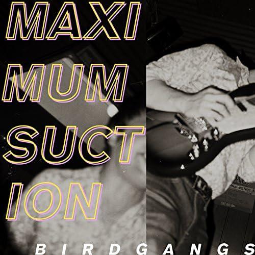 Birdgangs
