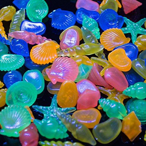 WINOMO 60pcs galets pierres décoratives colorées Conque coquille Pavées de galets pour Aquarium (multicolore)