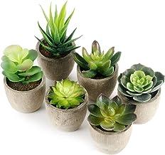 GoMaihe Kunstplanten 6 Stuks met Grijze Pot, 6 x 8cm Mini Plastic Nep Groen Gras, voor Woonkamer Balkon Badkamer Kantoor Bruiloft Decoratief, Voortreffelijk Nieuw Huis Cadeau