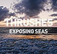 Exposing Seas [Analog]