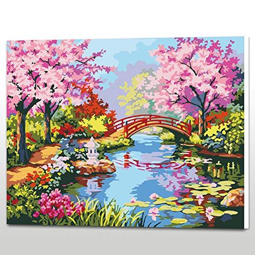 WYTCY Handgemaltes Ölgemälde Auf Leinwand Von Zahlen Frühlingsbild Färbung Von Zahlen Gerahmte Wand Für Das Schlafzimmer 40x50cm