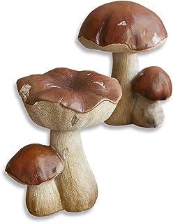 Borsa fungo sammelkorb fungo Cesto pieghevole fungo libro FUNGHI COLTELLO pilzset fungo BUSTINA