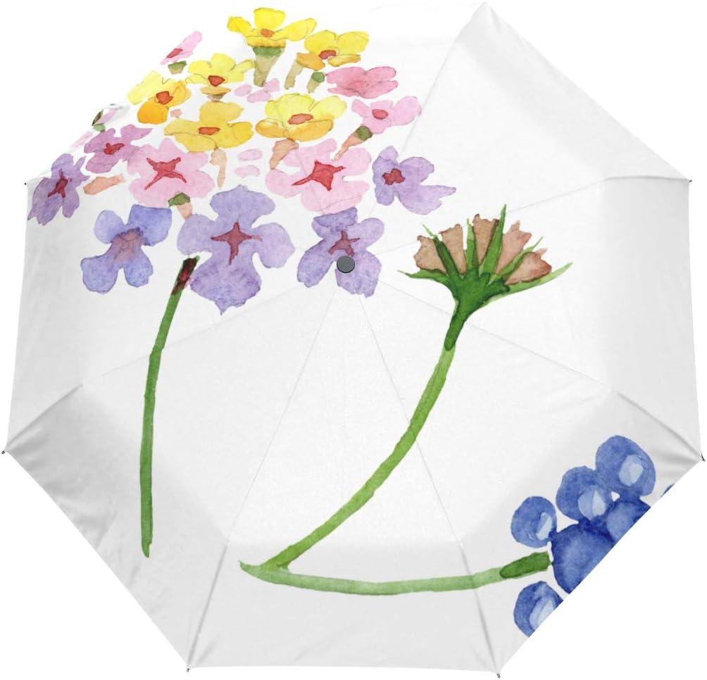 XDCGG Retro Super beauty product restock quality top Sun Umbrella For Flowers Las Vegas Mall Gift Blo Camara Lantana