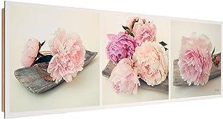 30x40 cm Pivoine Impression sur Toile D/écoration Murale Image Imprim/ée 1 Partie Rose Feeby Vintage Tableau D/éco