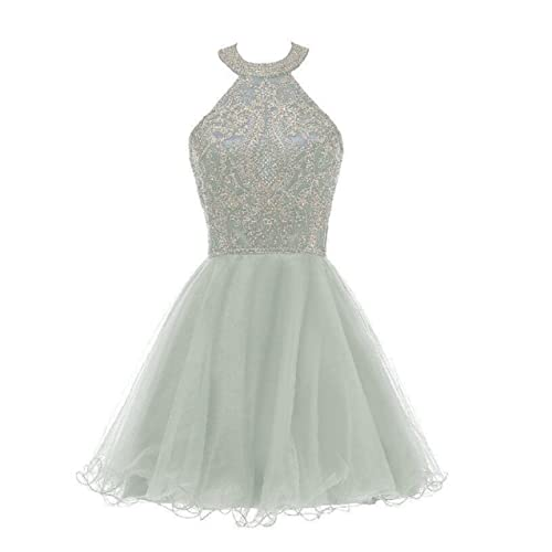 e4cc1ae8cdae Short Tulle Homecoming Dresses Lace Appliques Beaded Puffy Prom Gowns