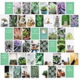 MyBohoCottage Photo Collage Kit with Adhesive stickers - Set of 50 - ZEN Photo Wall Collage Kit for Wall Aesthetic – Tezza Collage Kit – Succulent Wall Art – Picture Collage Kit for Wall Aesthetic