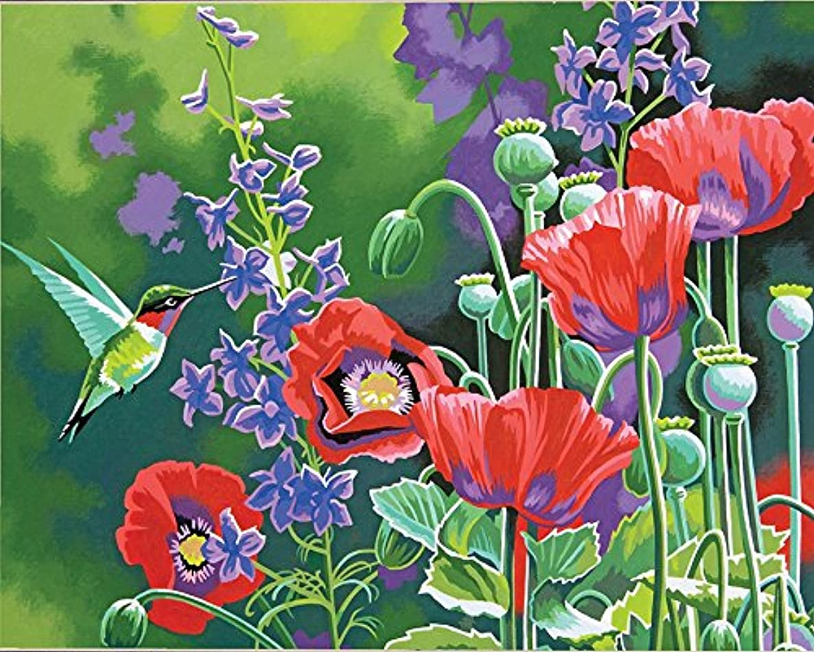 Dimensions Hummingbird and Poppies Paint by Numbers for Adults, 14'' W x 11'' L
