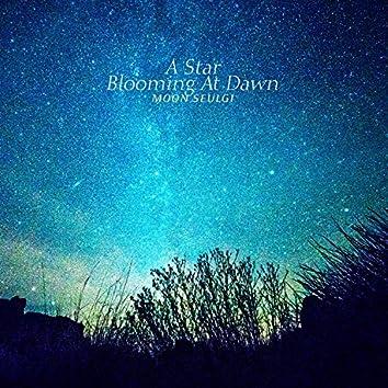 A Star Blooming At Dawn