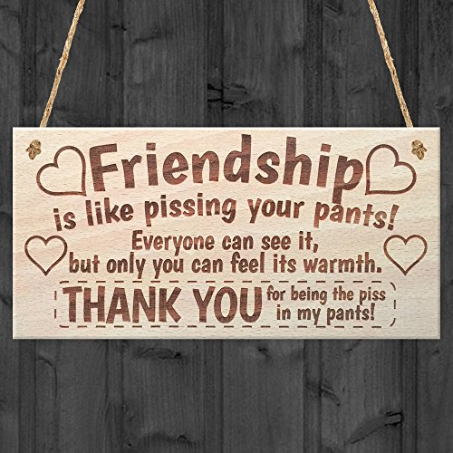 Friendship Sign Best Friend Plaque Gift Shabby Chic Heart & Thank You -...