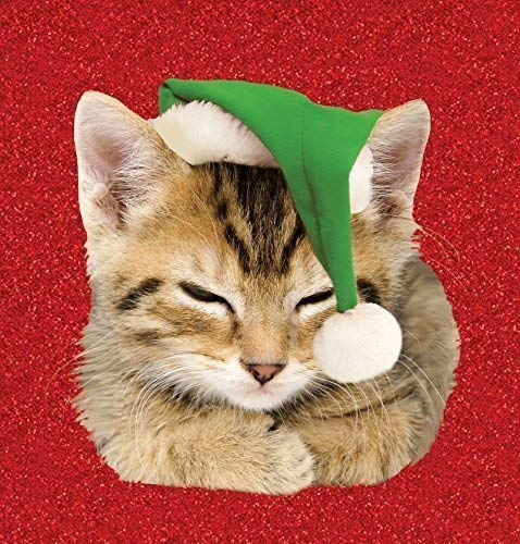 Magneet & Staal 7016 Kitten Hoed Kaart - Groen