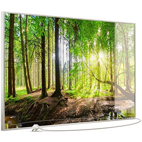 STEINFELD Heizsysteme® Glas Bild Infrarotheizung mit Thermostat | Made in Germany | viele Motive 350-1200 Watt Rahmen silber/alu (900 Watt, 067 Wald Panorama)