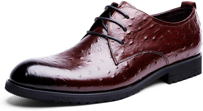 GAOLIXIA Men Business Lace-up Dress shoes Casual Men's Four Seasons shoes - Business shoes - Ostrich Pattern Dress shoes -Size 6-10