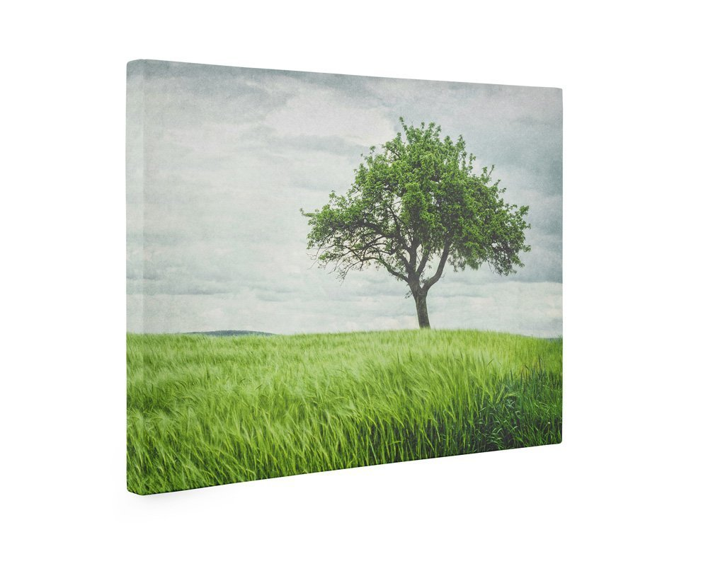 Large Format Discount is also underway Print Canvas Sale special price or Rustic Wall Unframed Countryside