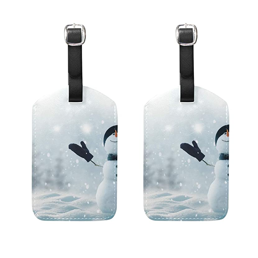 Luggage Tags Sky Snow Womens Bag Suitcase Tags Holder traveling accessories 2 Piece