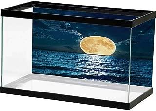 bybyhome Image Decor Ocean,Island Sea Life Wavy Vivid Open Sunny Sea Shore Sand Beach Art Print Image,Bue Teal Cream White with Sticker on The Backside
