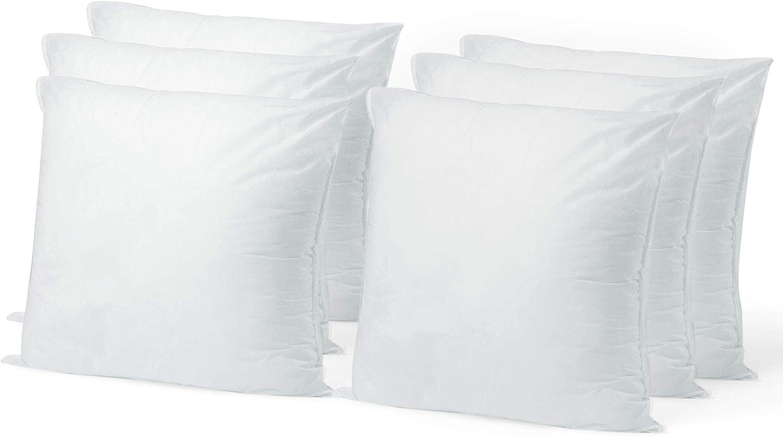 安心の定価販売 Pillow Insert 22