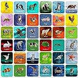 Hebayy 36 Pair Animal Matching Game Flash Cards Erasable (Each Measures 2 X 2)