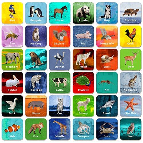 36 paia di carte flash da gioco con animali cancellabili (ogni misura 5,1 x 5,1 cm).