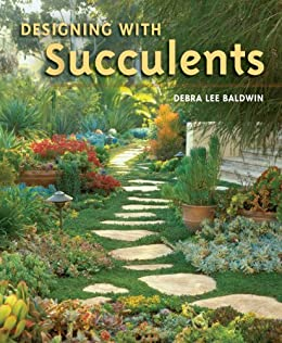 Designing with Succulents by [Debra  Lee Baldwin]