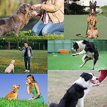 Sonku Lot de 3 sifflets pour chien pour arrêter les aboiements, outil de dressage à ultrasons professionnel réglable silencieux pour chiens avec 3 cordons gratuits - Noir, rouge, bleu