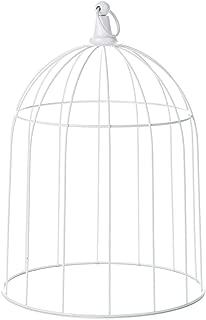 decorative wire cloche