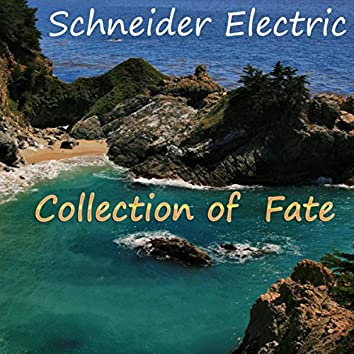 Collection of Fate