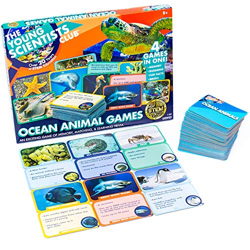 The Young Scientist Ocean Animal Card Games, 4 Card Games in 1, Matching, Bingo, Memory, Trivia, Hands-On Educational Fun, Homeschool Games