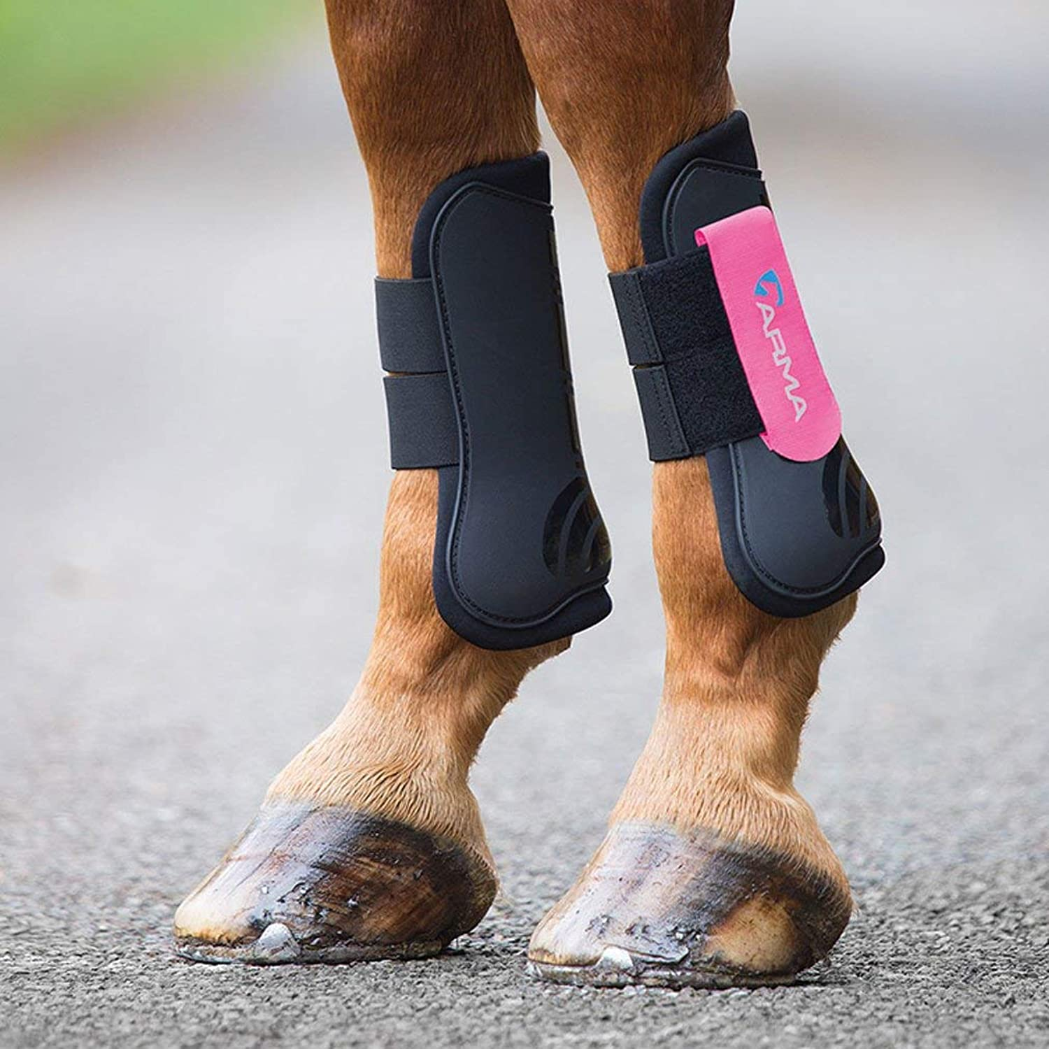Shires ARMA Tendon Boot Full Size Black Pink