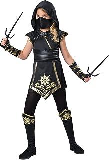 Fun World InCharacter Costumes Ninja's Mystique Costume, One Color, Size 10