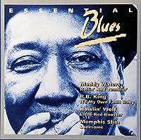 Jimmy Reed, Muddy Waters, B.B.King, Howlin' Wolf, Memphis Slim...