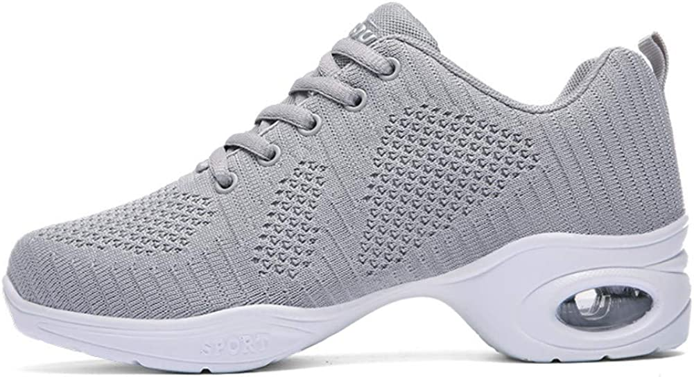 Great Large special price !! interest HSINYA Womens Mesh Split-Sole Jazz Ballr Girls Shoes Air Cushion