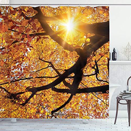 ABAKUHAUS Natur Duschvorhang, Sonne im Oktober Ernte, Seife Bakterie Schimmel & Wasser Resistent inkl. 12 Haken & Farbfest, 175 x 200 cm, Orange