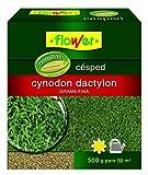 Flower 10796 10796-Semilla cynodon dactilon, 500 g, No aplica, 14.4x6x16 cm