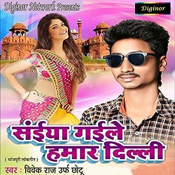 Saiyan Gaile Hamar Delhi