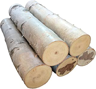 Large Birch Fireplace Log Set of Five