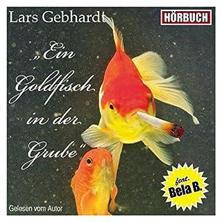 Ein Goldfisch in der Grube Titelbild