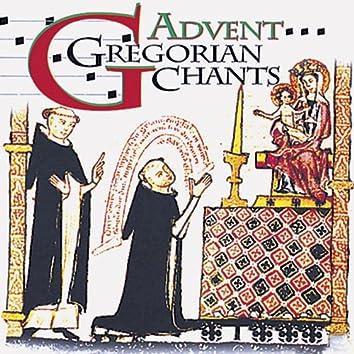Gregorian Chants - Advent & Christmas