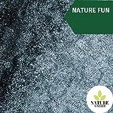 Nature Fun