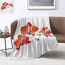 smllmoonDecor Floral Lightweight Blanket Orchid Flower Branch with Vivid Color Petals Blossom Botany Blooms Picture Summer Quilt Comforter 90