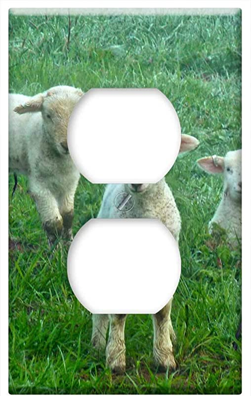 Switch Plate Outlet Cover Lambs Sheep Farm Lamb Animal Cute Animals