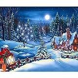 Kit de herramientas de pintura de bordado de diamantes de imitación 5D/imitación con diamantes redondos fabricación/para decoración de pared-Navidad ciudad vista nocturna 16X12inch