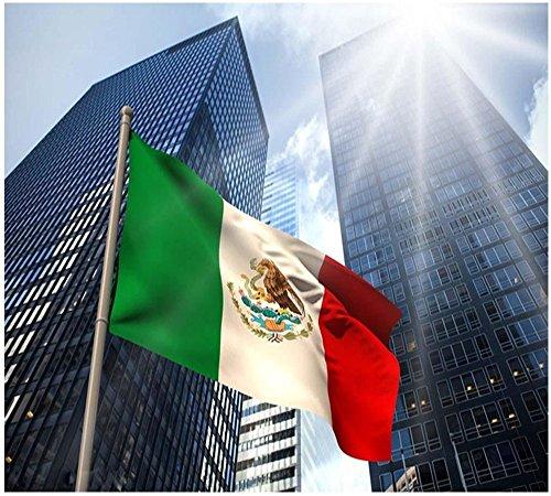 Xiton bandera mexicana 5 * 3 pies/150 * 90cm de poliéster bandera...
